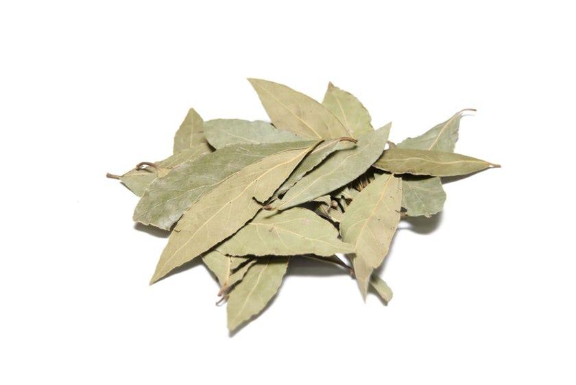 Laurel hojas deshidratadas