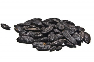 Habas Tonka. Tiene un aroma parecido a la vainilla, la almendra, y el clavo. Se utiliza como aromatizante. Especial para Gin Tonic